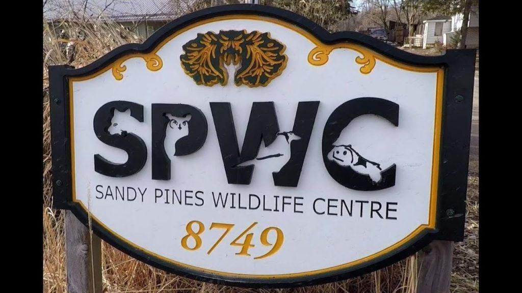 Sandy Pines Wildlife Centre